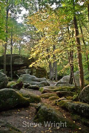 Allegany State Park - 2007