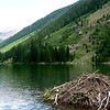 Beaver lodge on Maroon Lake