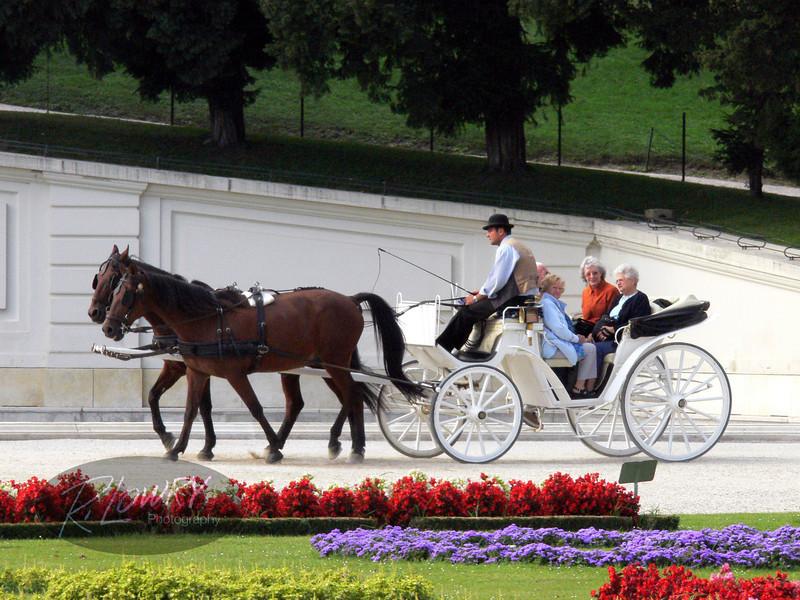 Carriage at Schonbrunn Gardens, Vienna