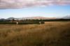 REW NZ Day1 Alpine to Franz Joseph 0051