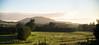 REW NZ Day1 Alpine to Franz Joseph 0028