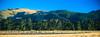REW NZ Day1 Alpine to Franz Joseph 0025