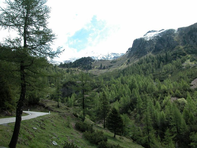 The south side of Passo Manghen, a super little pass. No traffic, great road.