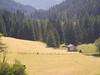 Staller Sattel road - near Erlsbach
