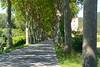 Near Arques