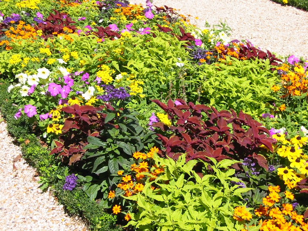 A flower bed at Luxembourg Gardens