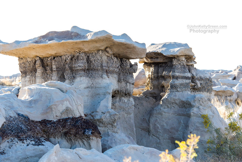 Bisti_Wilderness_2017_017