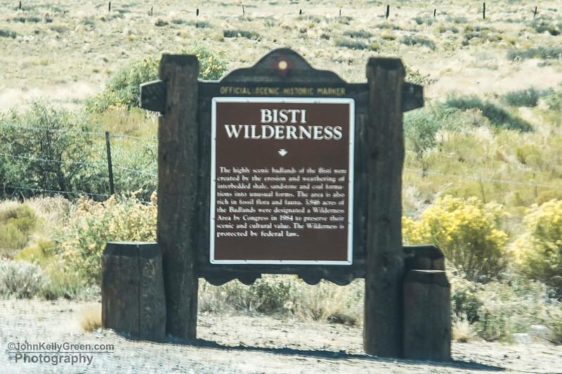 Bisti_Wilderness_2017_001