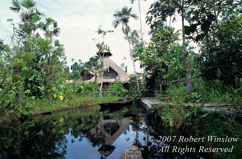 Approaching Sacha Lodge in Dugout Canoe, Amazon Basin Rain Forest, Ecuador