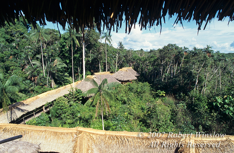 Sacha Lodge from Observatin Tower, Amazon Basin Rain Forest, Ecuador
