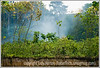 Smoke from a fire set to clear a small patch of land for farming along the Amazon River in Peru.  As you can see, the bank is high, as this is the late summer and the river is quite low.  Actually the bank is much steeper than you can see in the photo.