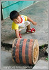 In Iquitos, Peru, we saw this little guy playing happily with what seemed to be a section of a log that had been painted.  I had the camera set on too slow a speed, so the image is not as sharp as I'd like, but I just love this little fella.