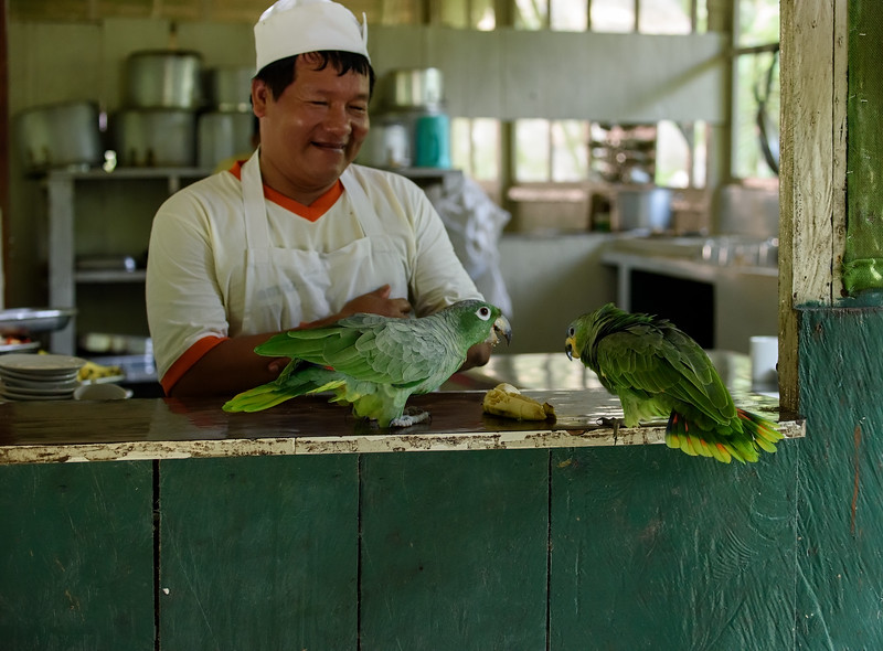 Chef and Parrots at Ceiba Tops Lodge