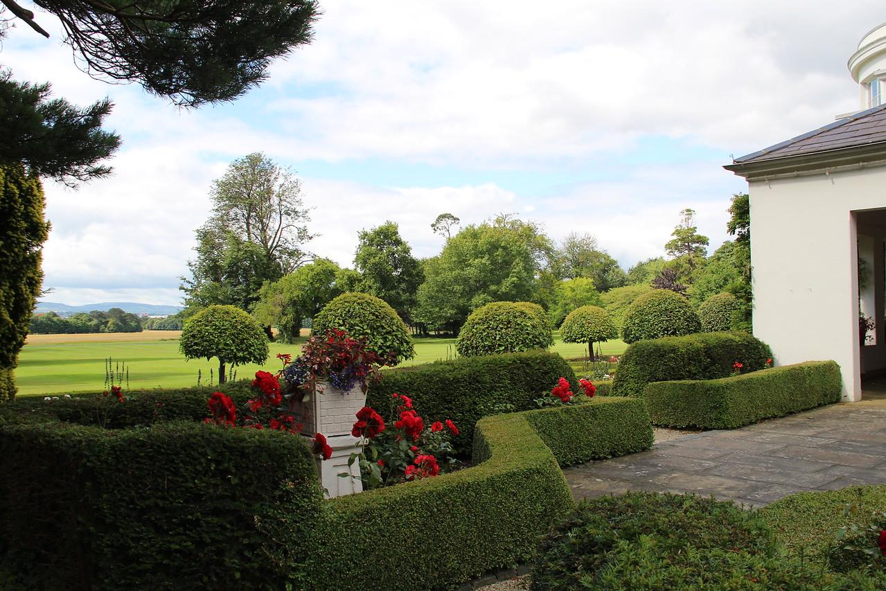 More hedges.