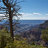 Views from lookout below Grand Canyon Lodge, North Rim
