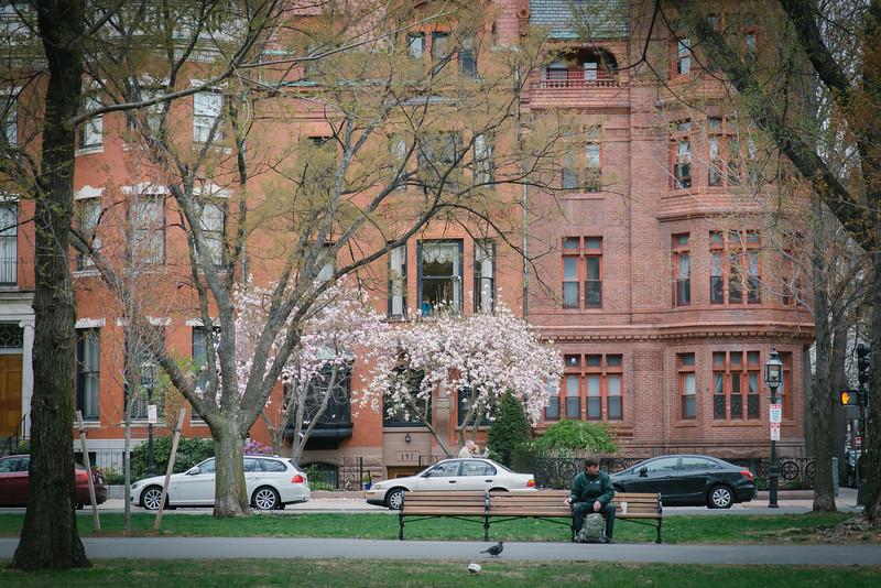 Nyuko-Days-in-Boston-15