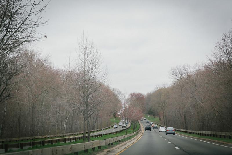 Nyuko-Days-in-Boston-6