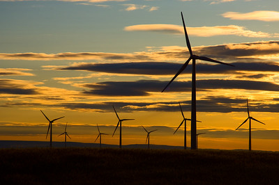 Morning at a Windfarm in Oregon along the columbia river with fields of wheat ready to be harvest.