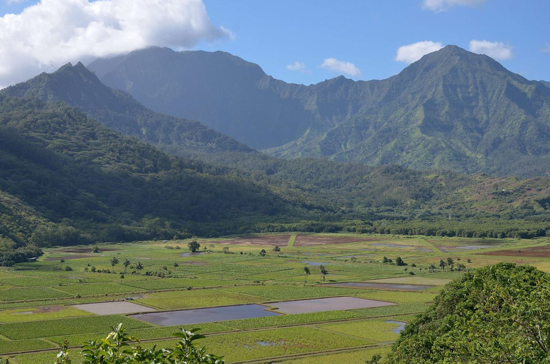Hanalei lookout<br />  Princeville, Kauai