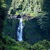 Akaka Falls State Park<br /> Hawaii