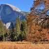 Half Dome from Cooks Meadow<br /> <br /> Yosemite National Park