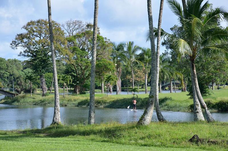 Wailoa Center Park<br /> <br /> Hilo,Hawaii