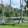 Wailoa Center Park<br /> <br /> Hilo,Hawaii