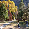 Yosemite Valley Chapel is a magnet for photographers