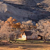 Gifford Homestead<br /> Capitol Reef National Park