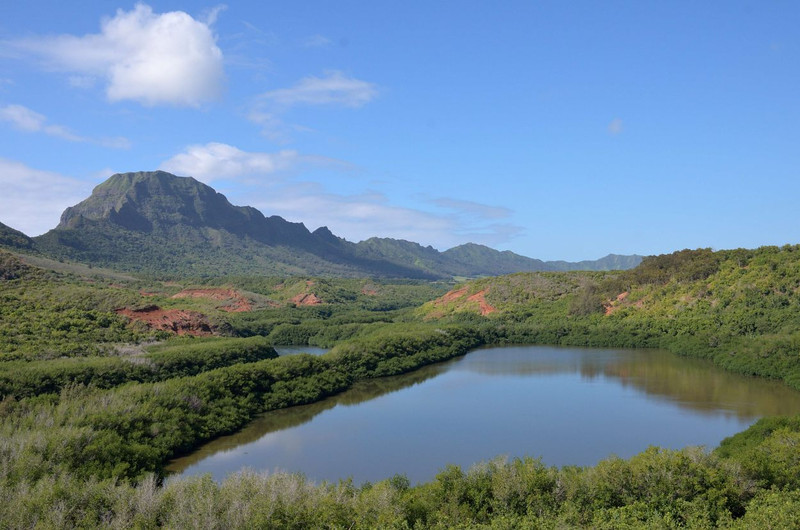Menehune Fishpond Overlook<br />  Kauai