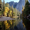 Mirror image in Merced River, Yosemite