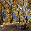 Cooks Meadow<br /> <br /> Yosemite National Park