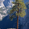 Glacier Point<br /> Yosemite National Park