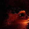 Thurston Lava Tube<br /> Volcanoes National Park<br /> Hawaii