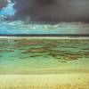 Sea, Surf, Coral