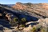 Comb Ridge Hiking