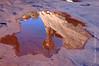 reflection molar shaped rock