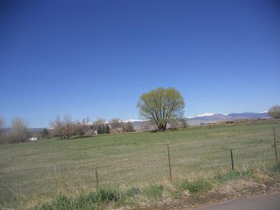 Cross Country 2011