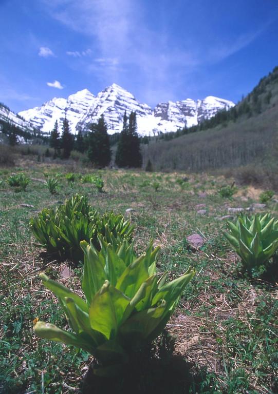 Maroon Bells, Spring snow, Aspen, Colorado