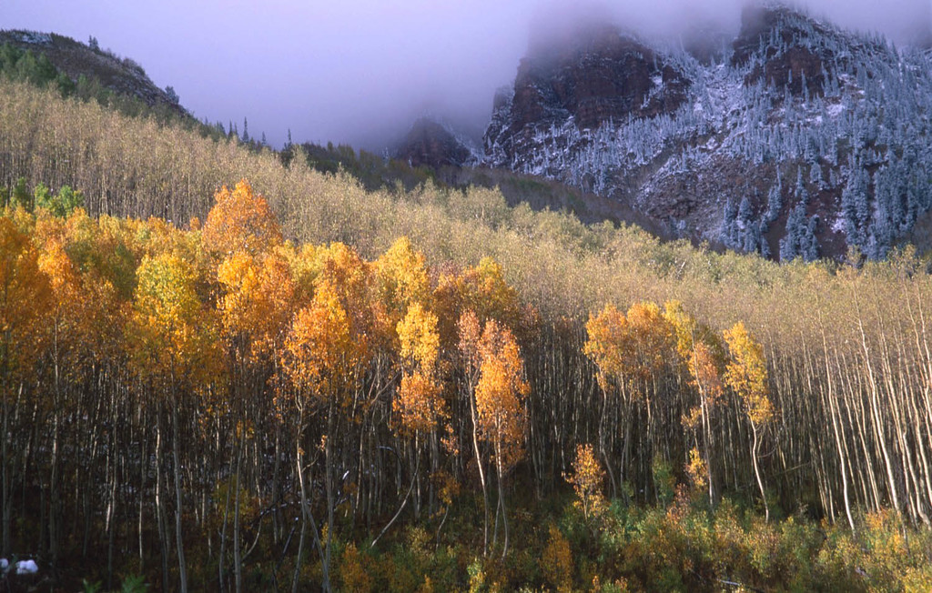 Maroon Bells first snow in Fall, Aspen, Colorado