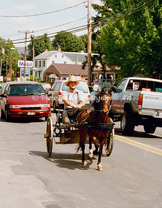 Amish Man in Buggy