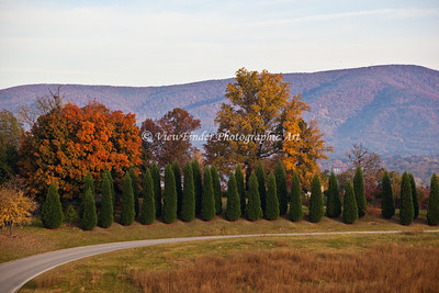 Fall Colors in Roanoke Valley