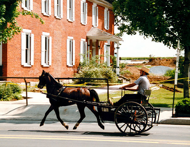Amish Convertable