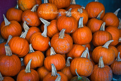 Can You Say Pumpkins?   Found this stash just waiting to be added to the display at Darden's Country Store in Smithfield, VA.