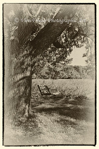 Antique print of old swing remains as a reminder of happy days on the old farm.