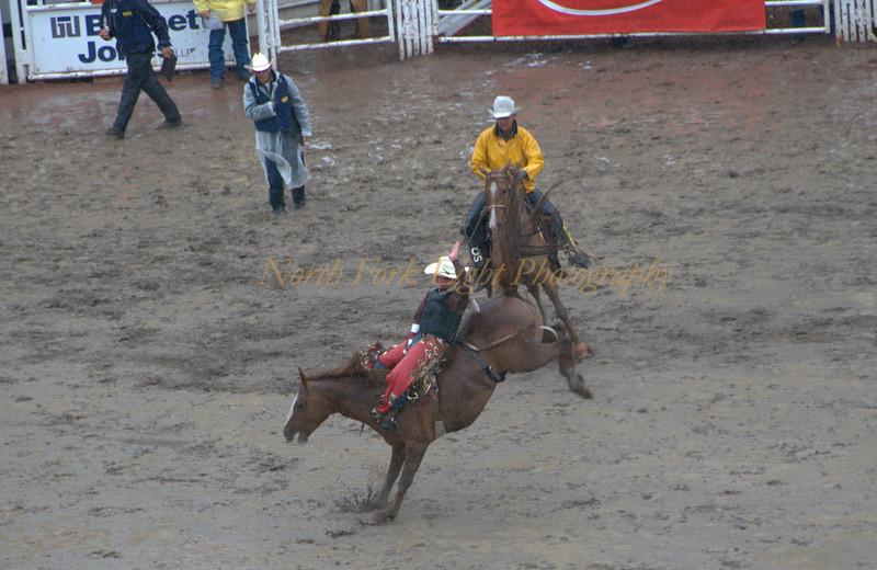 Ride 'em cowboy at Calgary Stampede