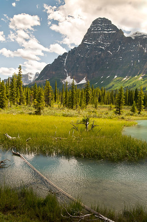 River winds along the Icefield Parkway.