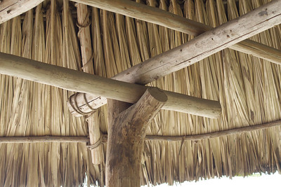 Wood and thatch roof built with no nails