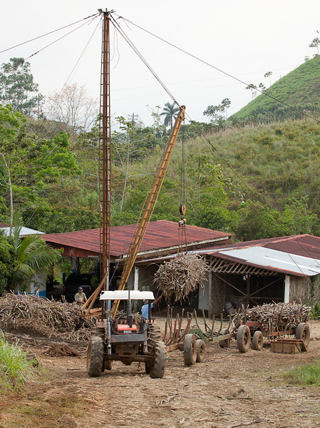 Sugar cane loadout.