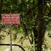 Crocodile warning, La Selva
